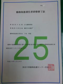 DSC_3300 - コピー.jpg